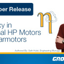 Efficiency in Fractional HP Motors and Gearmotors